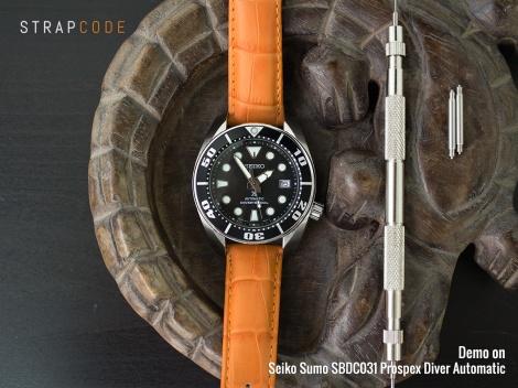 ns-cg2018023re-sp_seiko-sumo-sbdc031