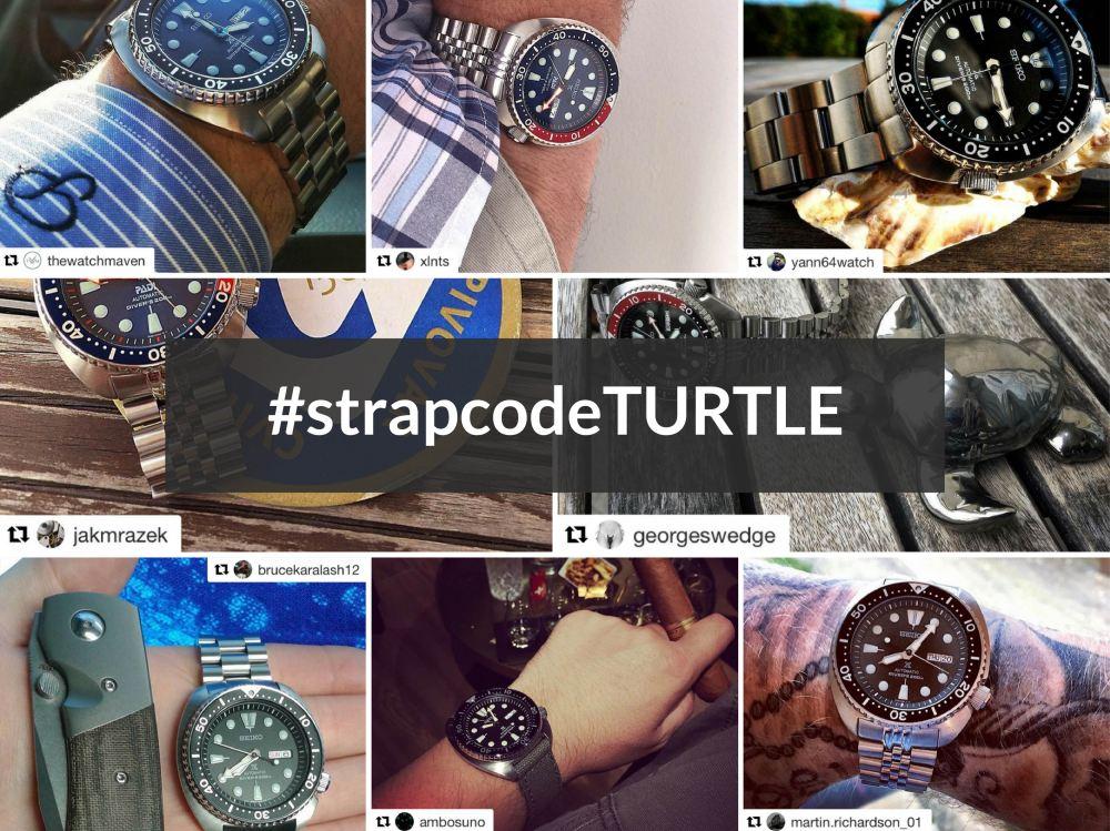 #strapcodeTURTLE-01